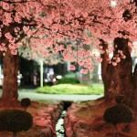 桜の下の2羽
